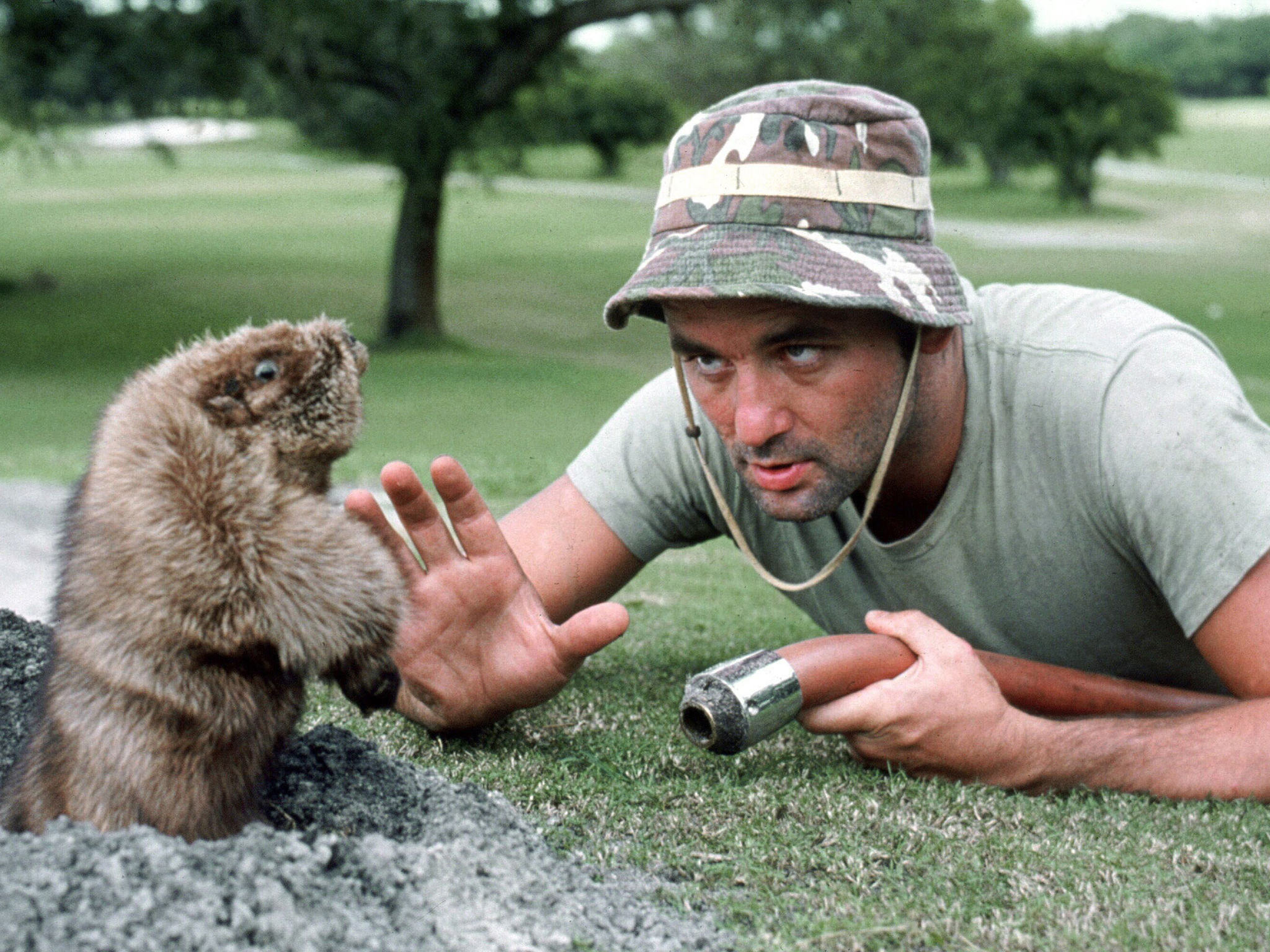 Murray faces off against a gopher in 'Caddyshack'